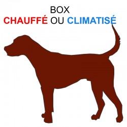 Pension box de 1 chien de même famille chauffé ou climatisé