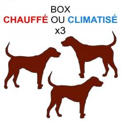 Pension box de 3 chiens de même famille chauffé ou climatisé