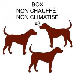 Pension box de 3 chiens de même famille non chauffé ou non climatisé